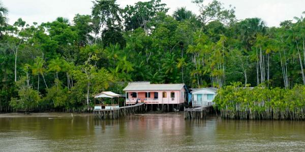 Habitations sur l'Amazone