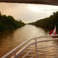 Vue du fleuve