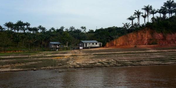 Rives de l'Amazone