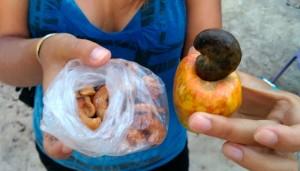 Le fruit du Caju, et les noix fraîchement grillées !
