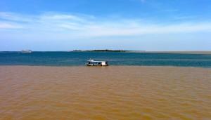 Rencontre du Rio Negro et du Rio Amazone, les 2 fleuves ne se mélangent pas (densité, vitesse, chaleur). Etonnant!