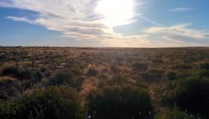 Nature en Patagonie