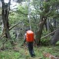 Début de la randonnée vers le lago Windhond