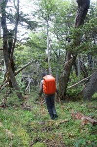 Début de la randonnée vers le logo Windhond