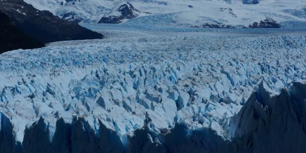 Un champs de «pics» du glacier