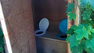 Nouveau concept de toilettes !