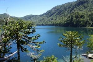 Les Araucarias et le Lago Verde
