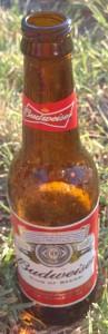 Boisson - Budweiser (1)