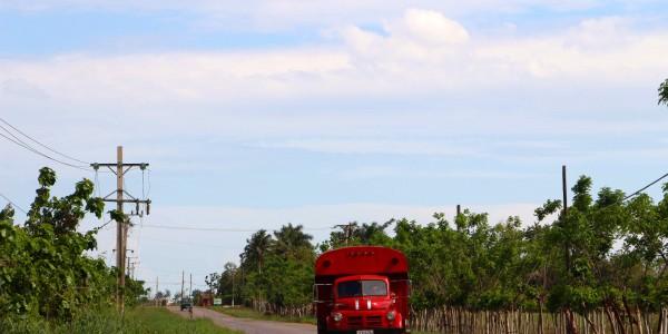 Bus cubain