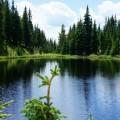 Magnifique petit lac