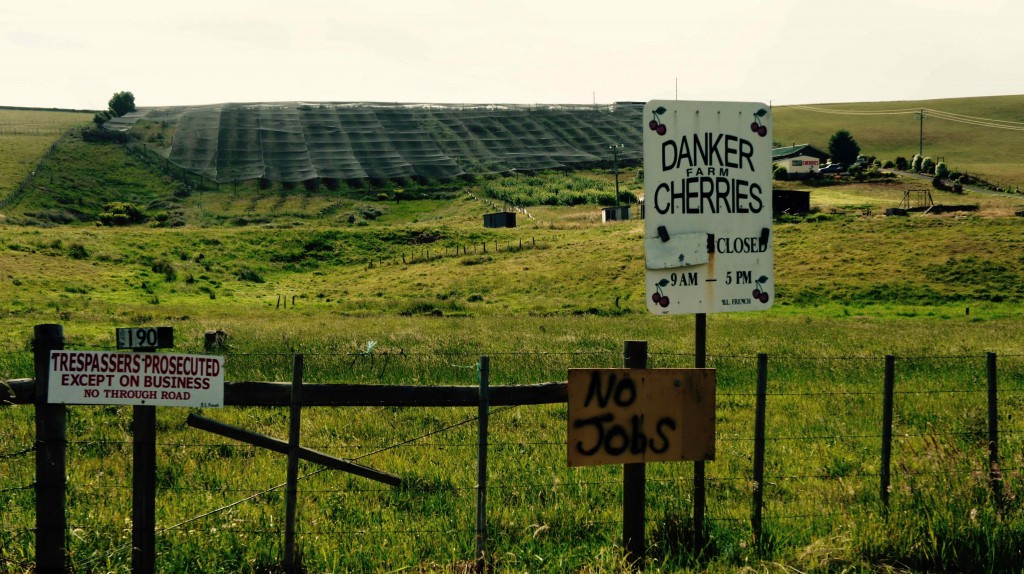 enallersimple – Tasmania : A la recherche du travail perdu