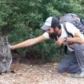 7. Kangourou