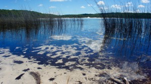 Lac Birrabeen
