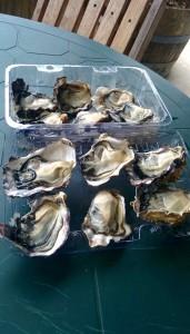 Repas - huîtres