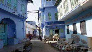 Village de Sambarh