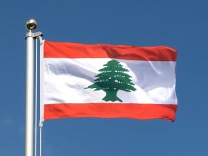 Le Cèdre est l'emblème du drapeau du Liban