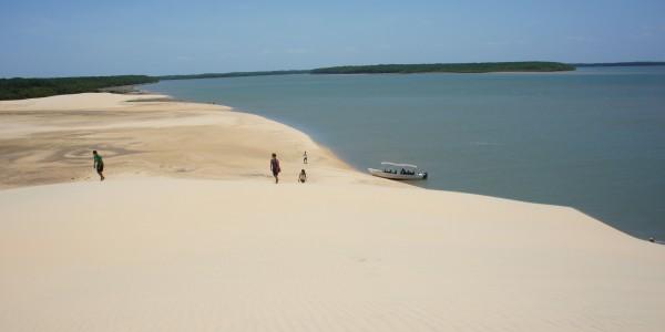 Des dunes de sable au milieu de la végétation du Delta de Parnaiba