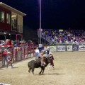 13. Rodeo