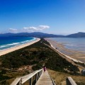 44. The Neck – Bruny Island