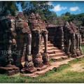79.1. Elephant terrace